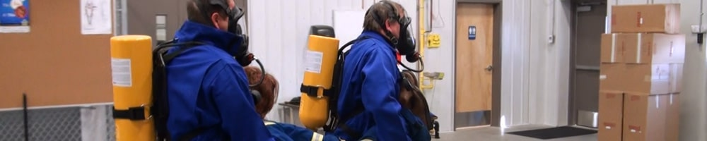 Online H2S Training